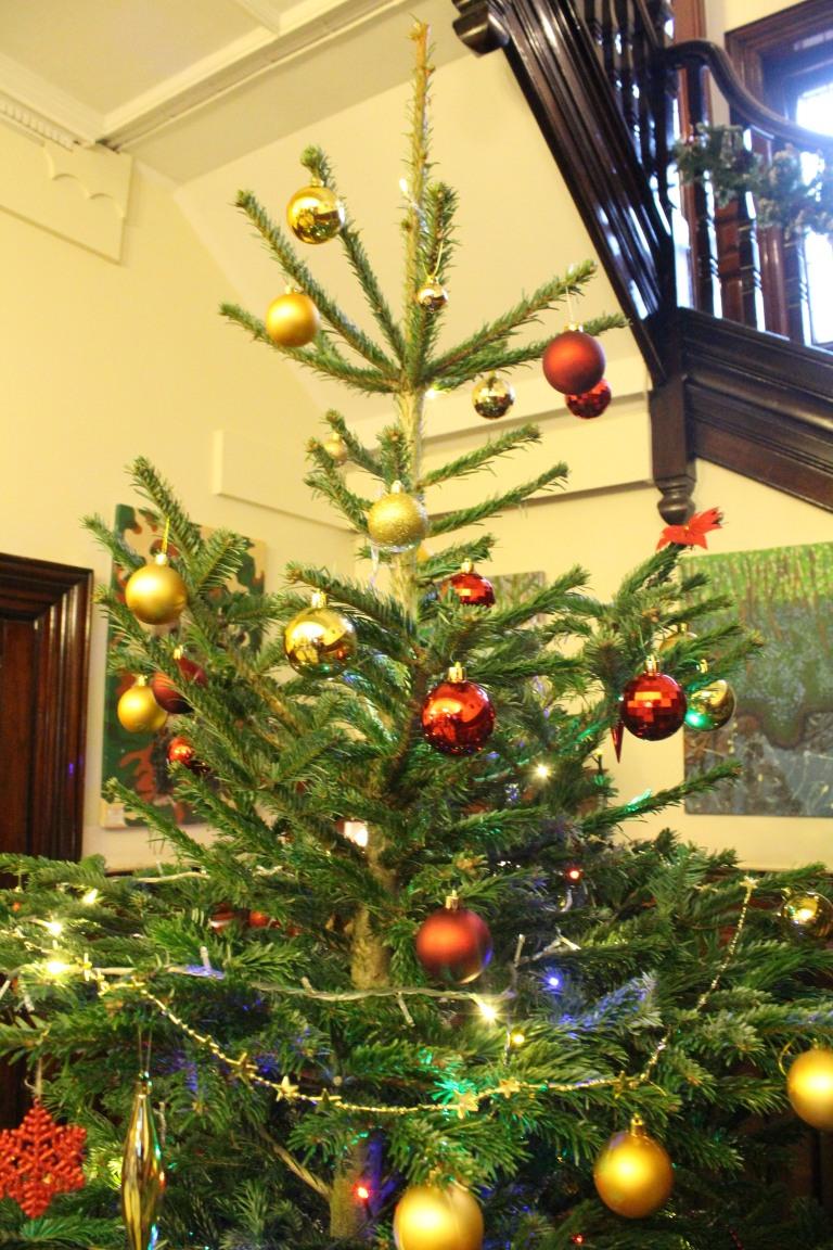 Christmas Tree 2017 - 15