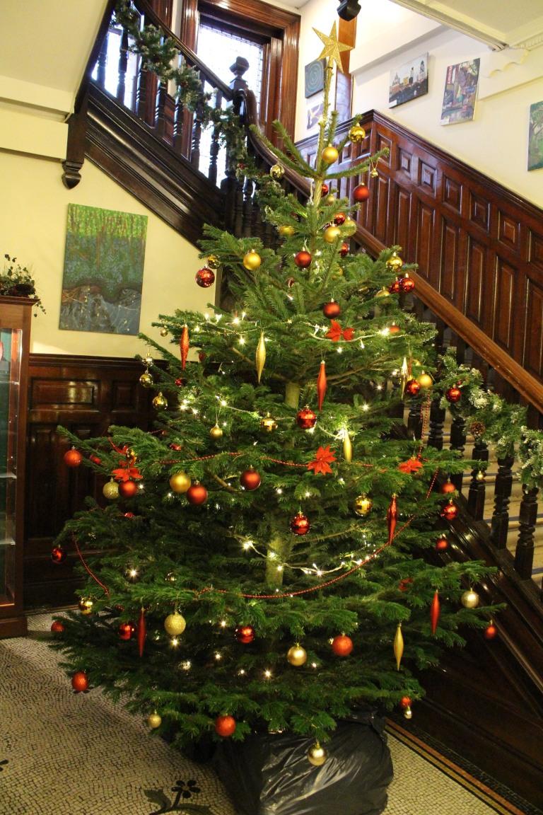 Christmas Tree 2017 - 25