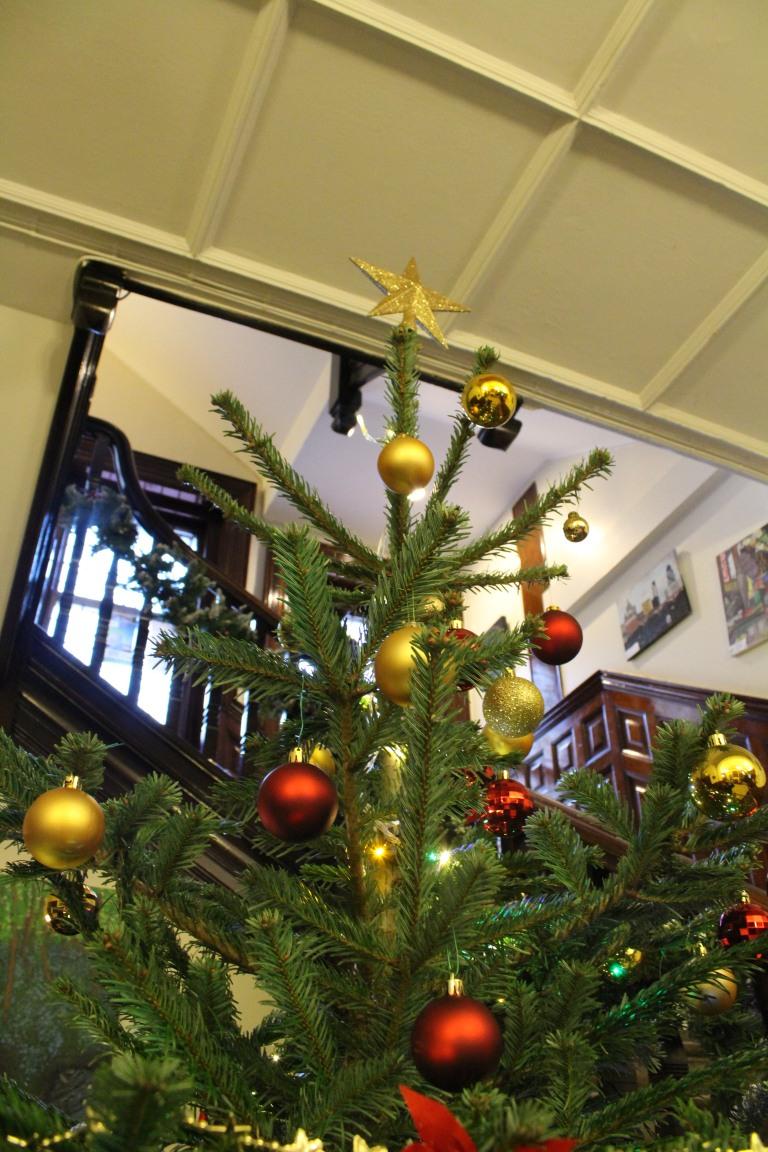 Christmas Tree 2017 - 26