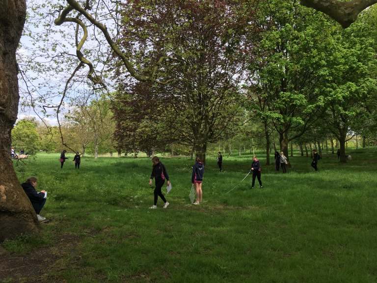Revision Hyde Park 2
